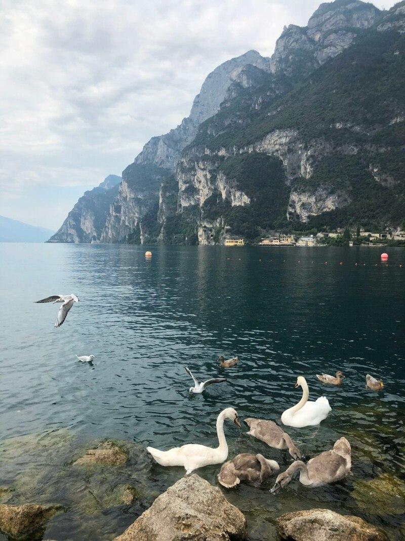 Авторский тур по самым красивым озёрам Италии (Комо и Гарда)