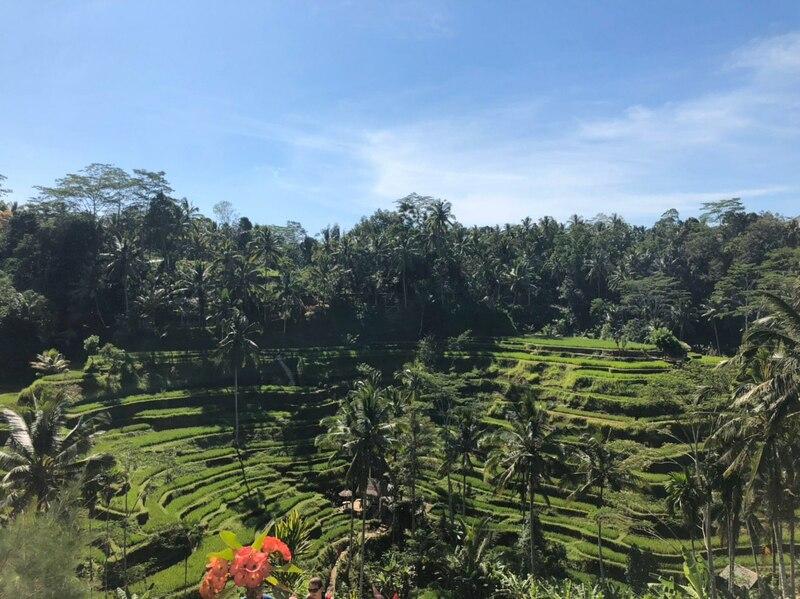 Экскурсионный двухнедельный тур на Бали