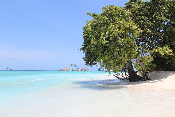 Отдых в отеле You & Me Maldives 5* (Adults Only 16+)